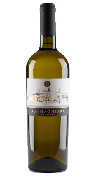 Resilienza Beneventano Falanghina IGT 1